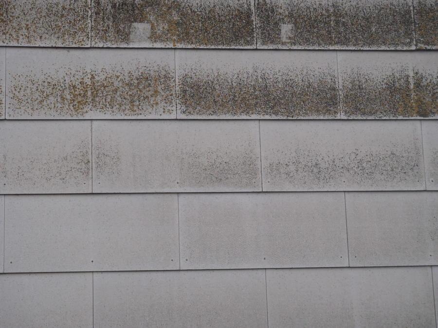 Fußbodenplatten Mdf ~ Fußbodenplatten asbest asbest in fußbodenplatten bodenbeläge